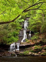 Tom Branch Falls, North Carolina Fine-Art Print
