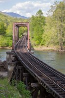 Abandoned Railroad Trestle, North Carolina Fine-Art Print