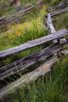 Split Rail Fence In Smith Rock State Park, Oregon Fine-Art Print