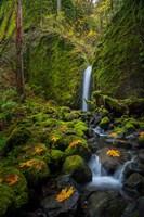 Mossy Grotto Falls, Oregon Fine-Art Print