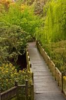 Bridge At Crystal Springs Rhododendron Garden, Portland, Oregon Fine-Art Print