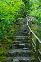 Summer Staris In The Portland Japanese Garden, Oregon Fine-Art Print