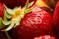 Close-Up Of Fresh Strawberry Fine-Art Print