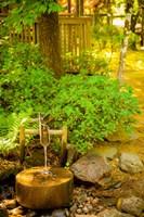Japanese Garden, Dundee, Oregon Fine-Art Print