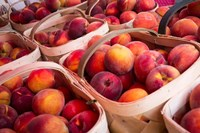 Peaches In Baskets, South Carolina Fine-Art Print