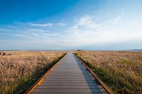 Walkway Going Through The Badlands National Park, South Dakota Fine-Art Print