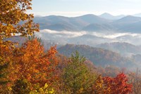 Morning Light Fog Viewed From Foothills Parkway Fine-Art Print