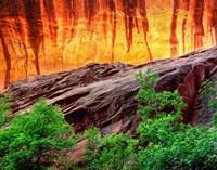 Escalante Neon Canyon, Utah Fine-Art Print