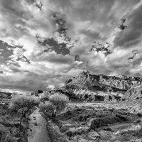 Sulphur Creek, Capitol Reef National Park, Utah (BW) Fine-Art Print