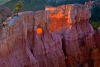 First Light On The Hoodoos At Sunrise Point, Bryce Canyon National Park Fine-Art Print