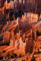 Sunrise Point Hoodoos In Bryce Canyon National Park, Utah Fine-Art Print