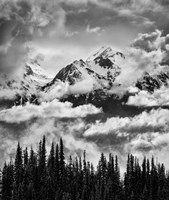 Mount Carrie And Carrie Glacier, Washington (BW) Fine-Art Print