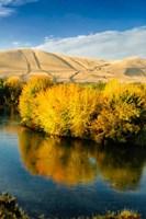 Autumn Color Along The Yakima River Fine-Art Print