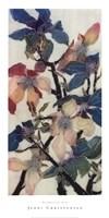 Magnolias XIII Fine-Art Print