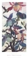 Magnolias XII Fine-Art Print