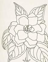 Gardenia Line Drawing Crop Fine-Art Print
