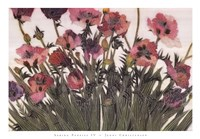 Spring Poppies IV Fine-Art Print