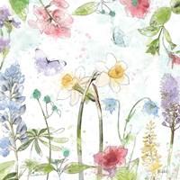 Spring Splash II Fine-Art Print