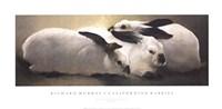 Californian Rabbits Fine-Art Print