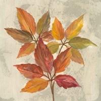 November Leaves I Fine-Art Print
