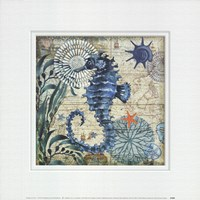 Monterey Bay Seahorse Fine-Art Print