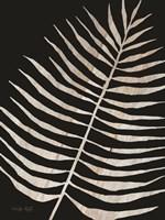 Palm Frond Wood Grain I Fine-Art Print