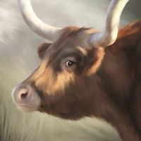 Phoenix Longhorn Fine-Art Print