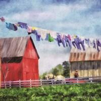 Clothesline Farm Fine-Art Print
