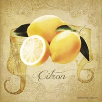 Vintage Lemons Citron Fine-Art Print