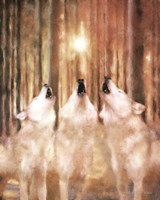Three Wolf Howl Fine-Art Print