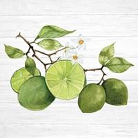 Citrus Garden VII Shiplap Fine-Art Print