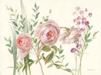 Flourish II Fine-Art Print