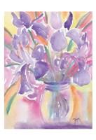 Dutch Iris Fine-Art Print