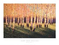 Aspen Light (Right) Fine-Art Print