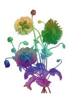 Color Bloom Fine-Art Print