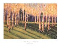 Aspen Light (Left) Fine-Art Print