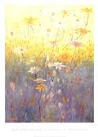 Corner of the Garden Fine-Art Print