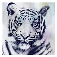Tiger Roar Fine-Art Print