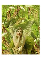 Fairy 22 Fine-Art Print