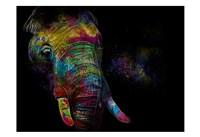 Kaleidoscope Elephant Fine-Art Print