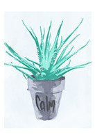 Calm Pot Fine-Art Print