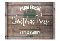 Farm Fresh Christmas Trees Fine-Art Print
