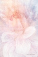 Soft Dahlia Pastel Peach Lilac Fine-Art Print