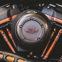 Harley II Fine-Art Print