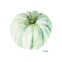 Mint Pumpkin Fine-Art Print