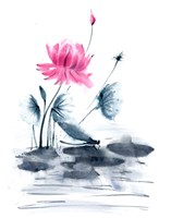 Pink Flower and a Lily Pad Fine-Art Print
