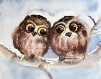 Owls Fine-Art Print