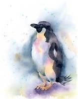 Penguin I Fine-Art Print