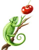 Chameleon Fine-Art Print