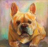 Frenchie Fine-Art Print